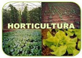 Médicos horticultores del COMNA organizan una charla, el próximo 15 de mayo, a las 19 horas, en la sede colegial.
