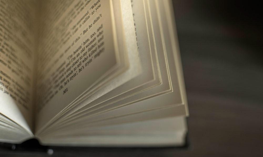 La Fundación para la Protección Social de la OMC convoca la VII edición del Premio de Novela Albert Jovell.